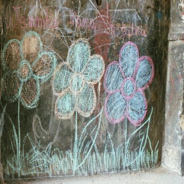 Kwiatki Bródnowska 14