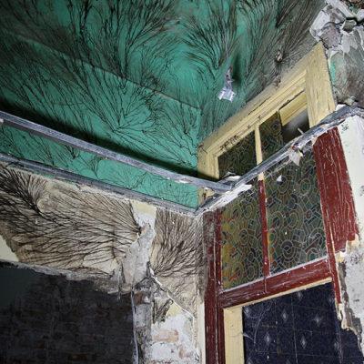 To mieszkanie musiało być niezamieszkiwane już przez jakiś czas ;) Grzyb utworzył niezwykłą mozaikę ;) - Jagiellońska 22