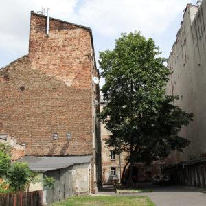 Brzeska 19 - podwórze