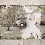 Targowa 61 – Niedawno odkryte polichromie